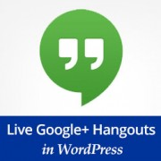Google Hangout in Wordpress